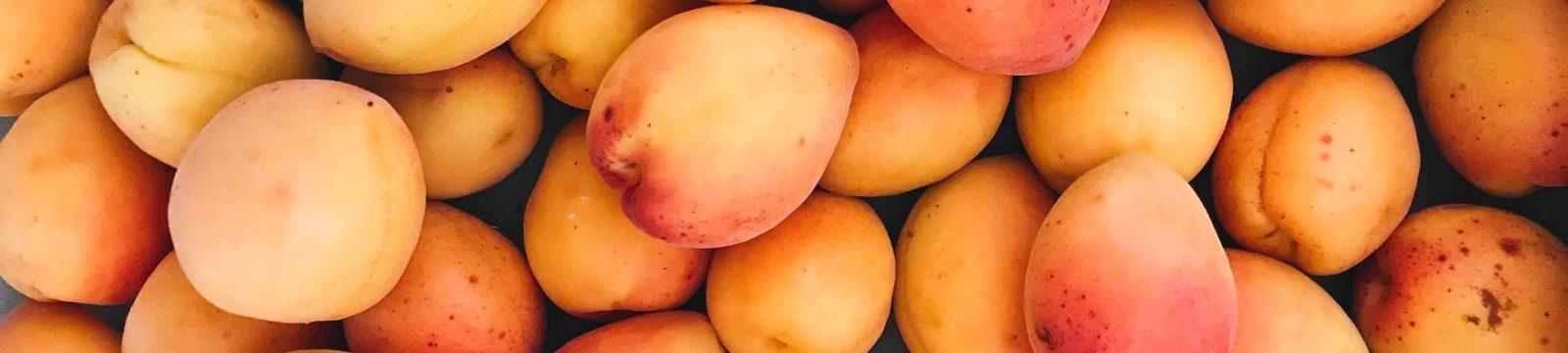Australian Mango Varieties